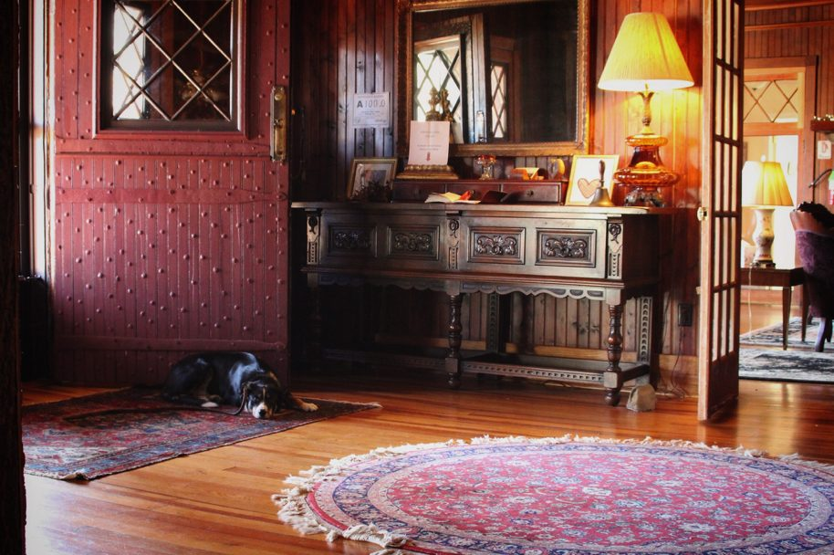 Dog Laying Down In The Lodge Foyer